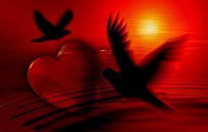 Sprüche Die Ans Herz Gehen Für Die Liebe